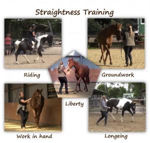 Straightness Training - 5 Trainingskomponenten