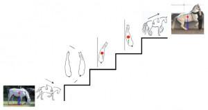 ST Treppe