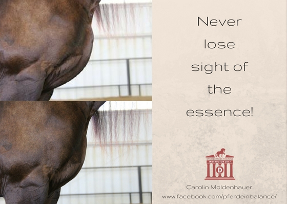 Never lose sight of the essence !