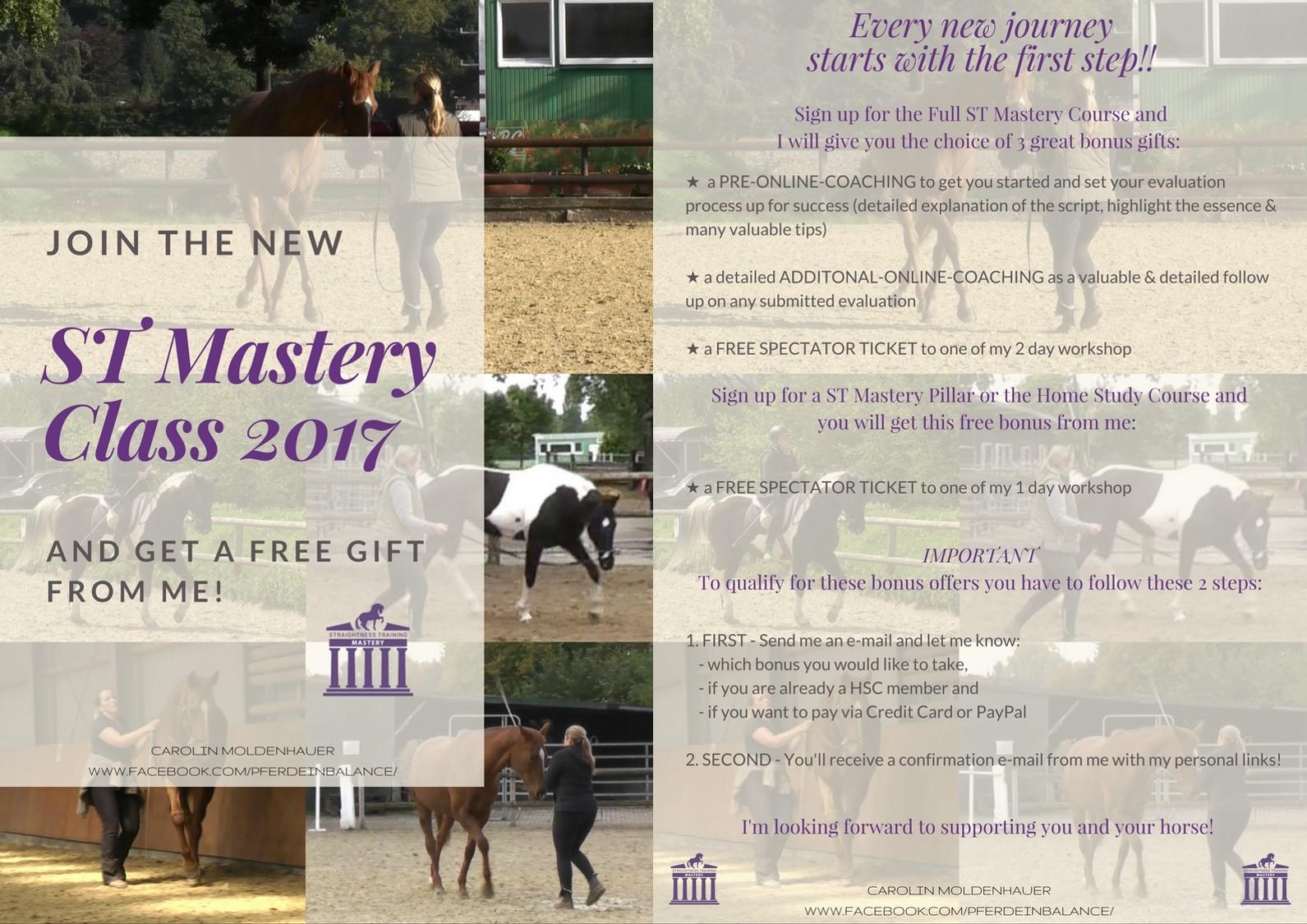 ST Mastery Class 2017 engl. final